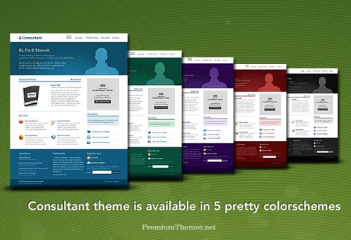 consultant-wordpress-theme2